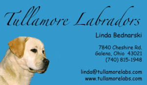 Tullamore-Business-Card-Updated